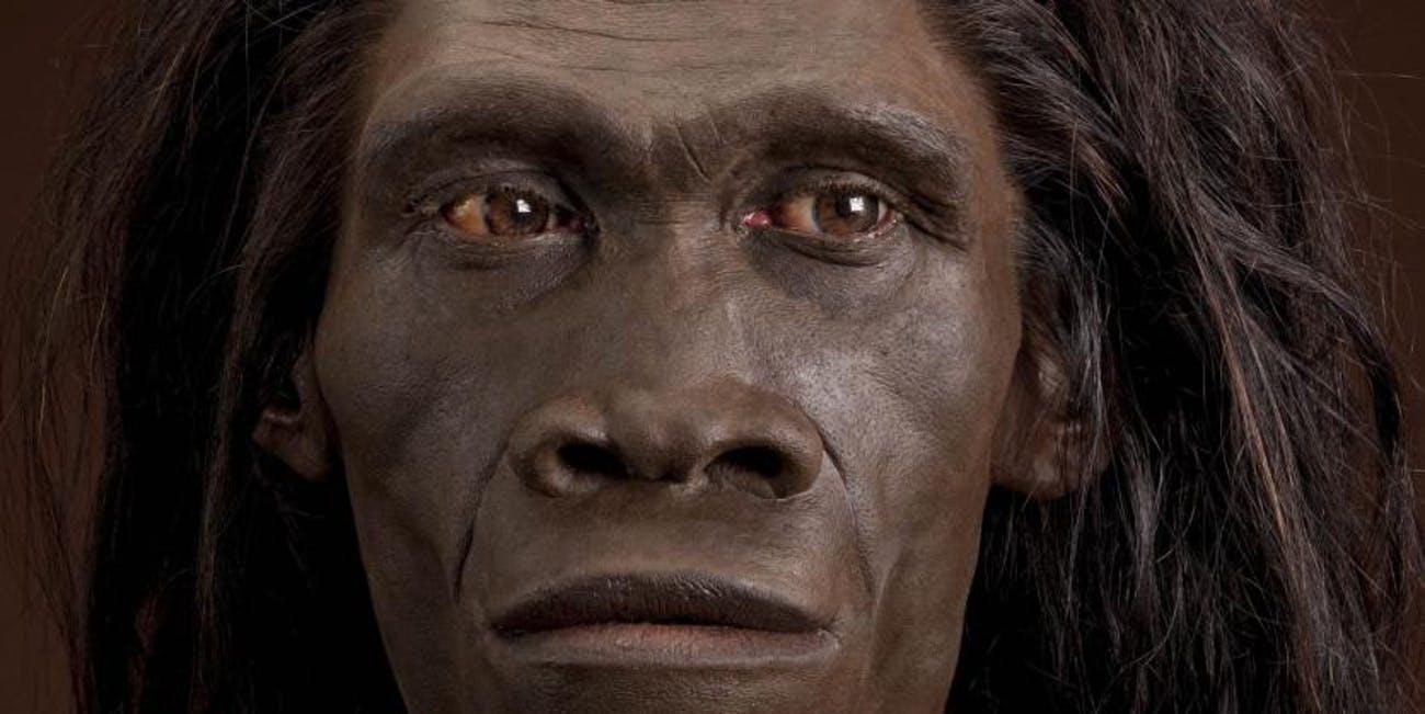 """Homo. """"Erectus""""dan """"sapiens""""ə"""