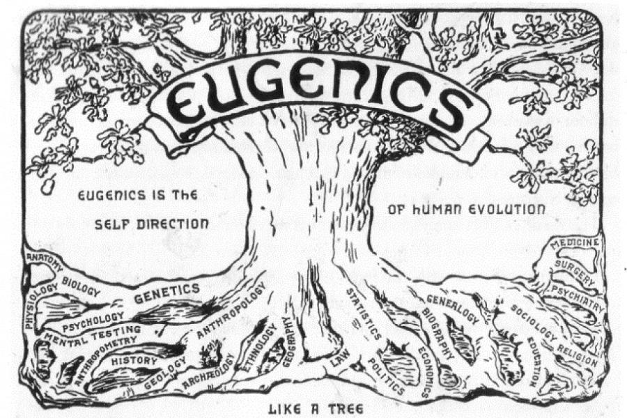 eugenics-tree-illustration