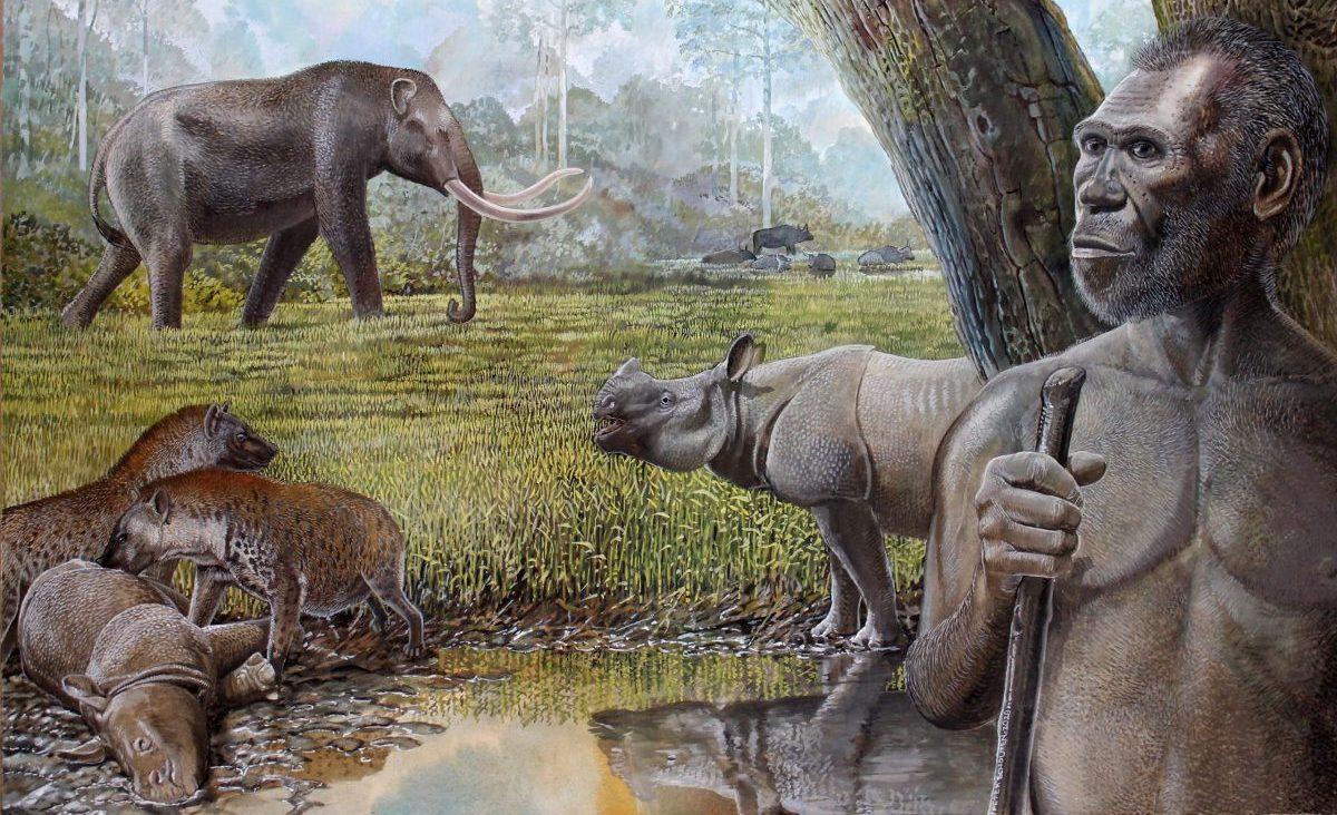 Savannah-Middle-Pleistocene-Southeast-Asia-scaled